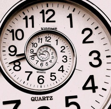 It's All Relative: The neural processing of time and how it could relate to  lifespan length | Neurdiness
